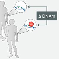 DP_genomics_pub_EpiMatch