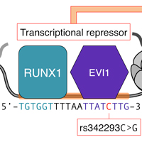 DP_genomics_pub_FAIRE-chip