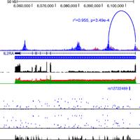 DP_genomics_pub_EpiVar