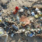 Fight against throwaway culture: Scottish Government appoints Professor Dame Theresa Marteau to expert panel tackling plastic pollution