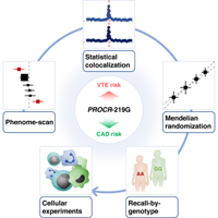 DP_genomics_pub_PROCR