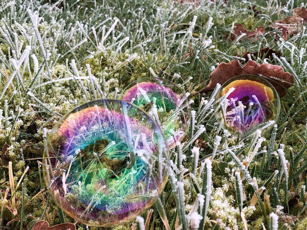 frozen bubbles in frozen grass